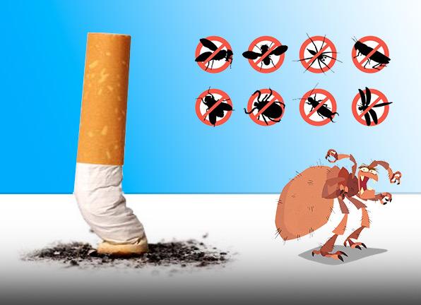 La cigarette anti parasite
